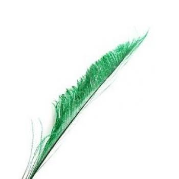 Peacock swords feathers (per 100 )