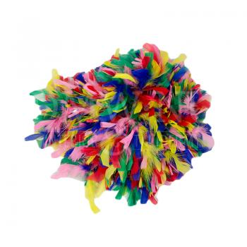 Feather wig - colored