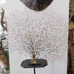 Dried seafan XL on stand