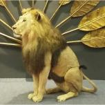 Mounted Lion